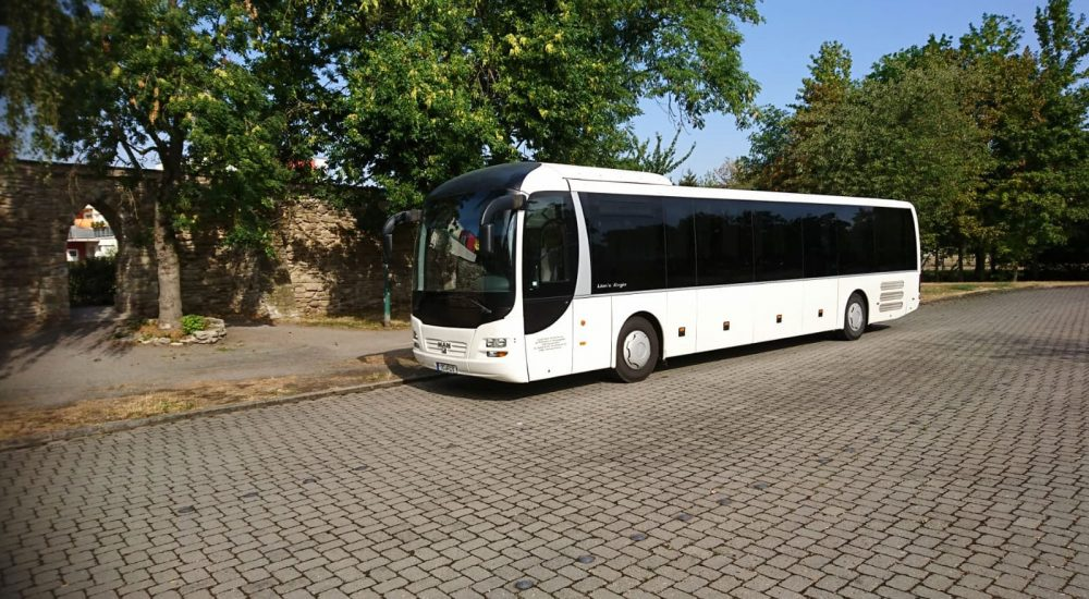BusFuchsHead-004